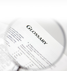 International removals glossary