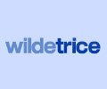 Wilde-Trice-Consultancy-Ltd