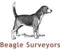 Beagle-Surveyors