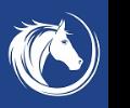 White-Horse-Surveyors-Ltd-(London)
